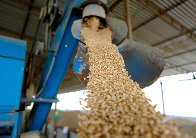 Заказать Услуги зернового терминала для погрузки автоконтейнеров