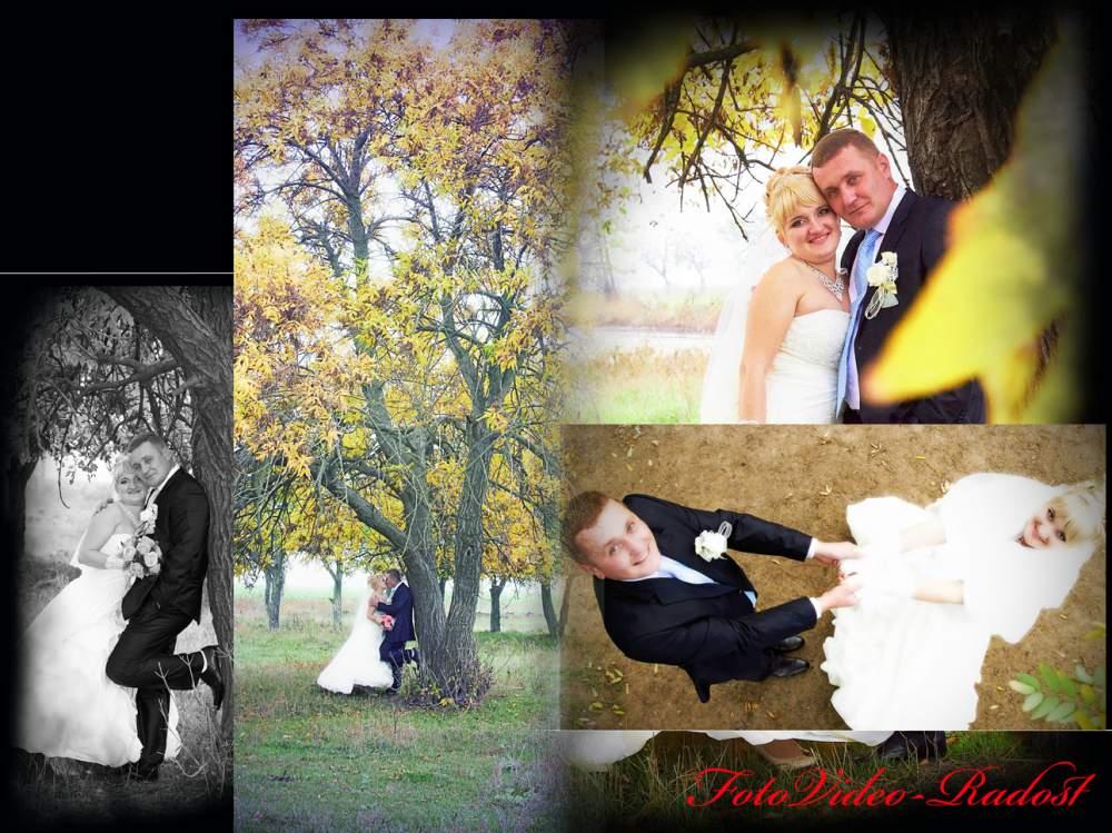 Заказать Свадебное фото в Ильичёвске