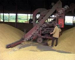 Заказать Очистка зерна, фасовка зерна, Печать на мешках