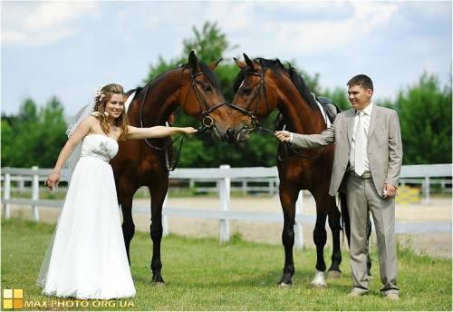 Заказать Фотосессия с лошадями