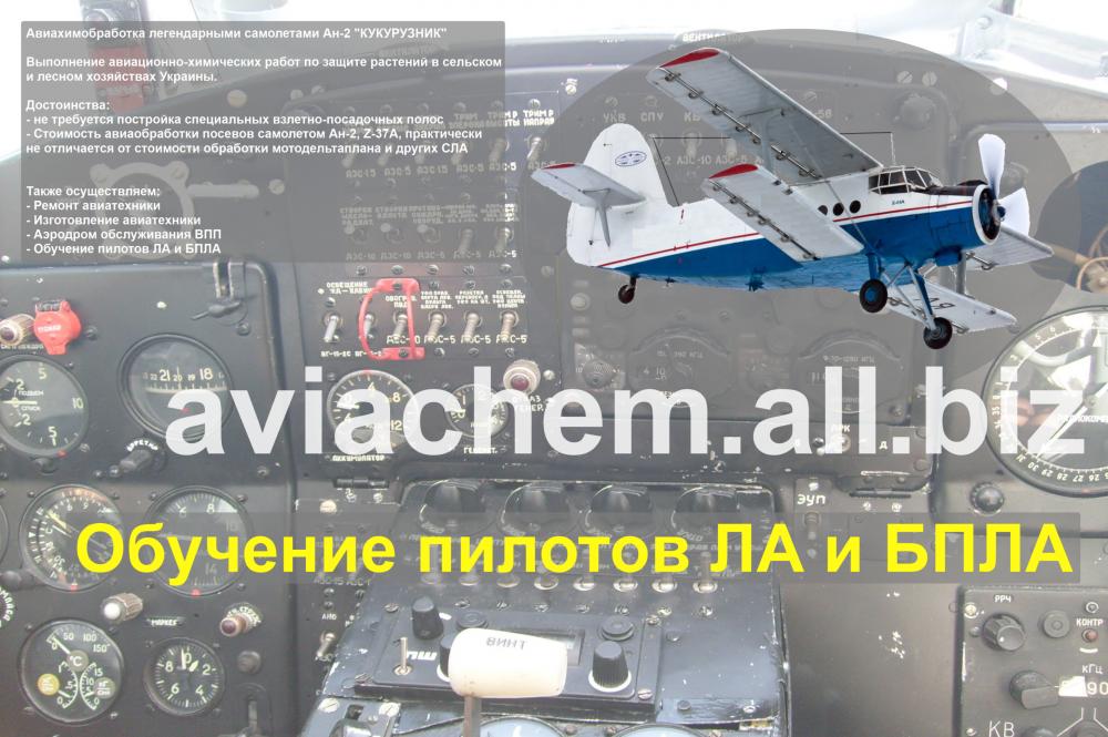 Заказать Обучение пилотов ЛА и БПЛА