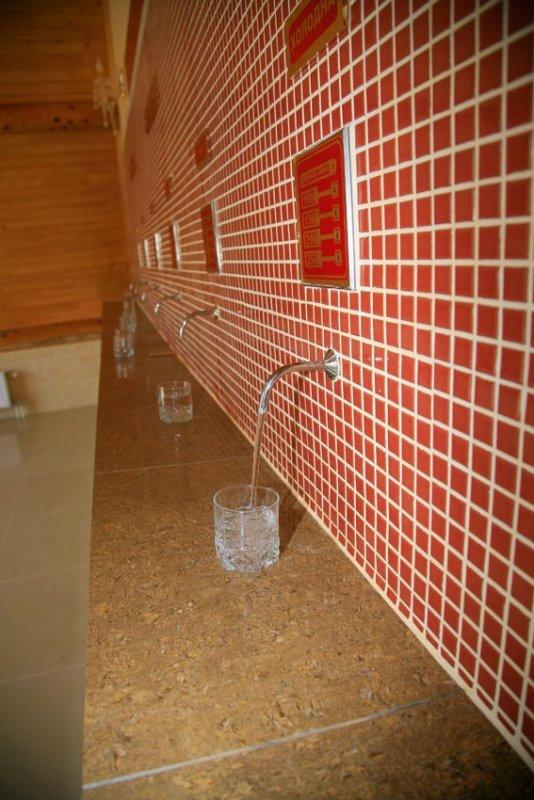 Заказать Шаянская минеральная вода