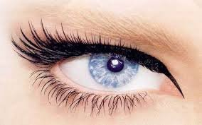 Coloring of eyelashes and eyebrows, biowave of eyelashes order in Kiev