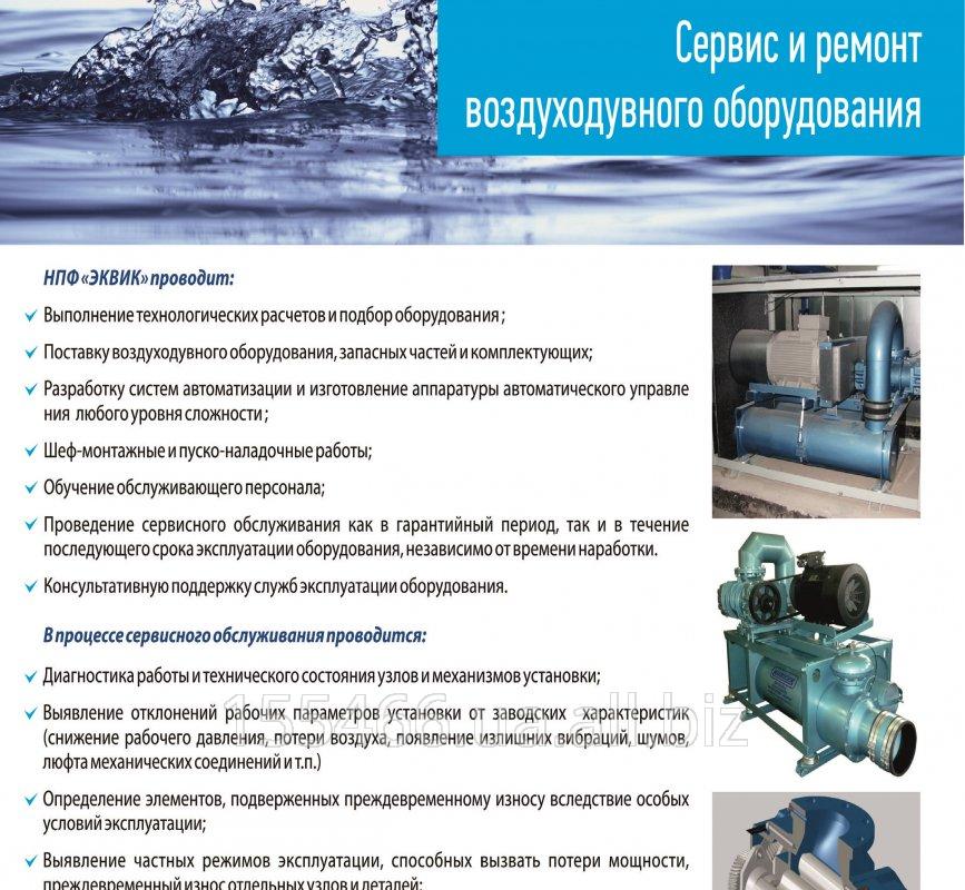 Сервис и ремонт роторных воздуходувок (типа РУТС)