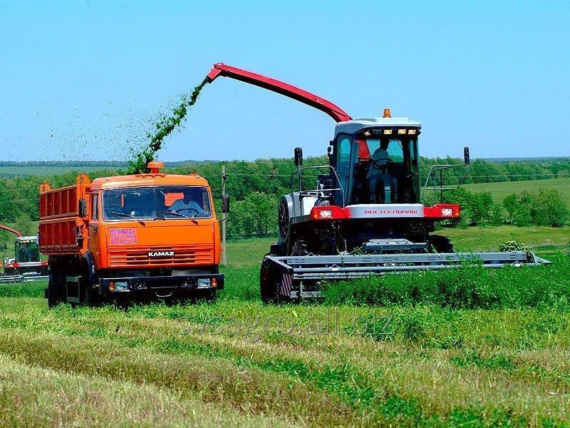 Заказать Услуга сбора травы