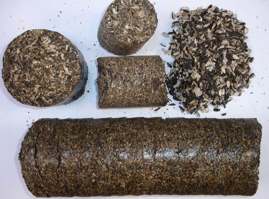 Давальческая переработка масляничных культур - рапс , лён , горчица , подсолнечник, зародыш.