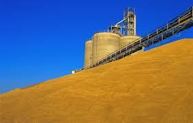 Заказать Хранение зерна на элеваторах цена