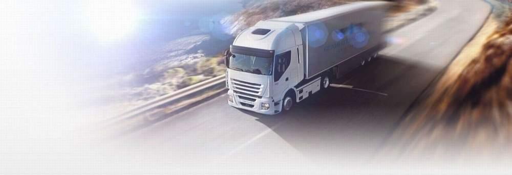 Заказать Автомобильные международные перевозки туда/обратно Молдавию, Беларусию, Россию, Польшу, Румынию, Германию, Италию, Австрию, Францию, Бельгию, Испанию, Нидерланды