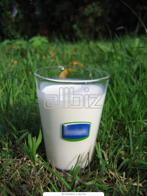 Заказать Молоко высочайшего качества