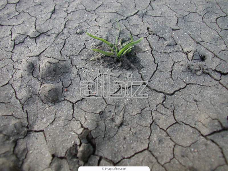 Замовити Дослідження й консалтинг по аналізі ґрунтів і ґрунтів