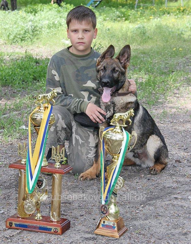 Заказать Подготовка детей с собаками к соревнованиям