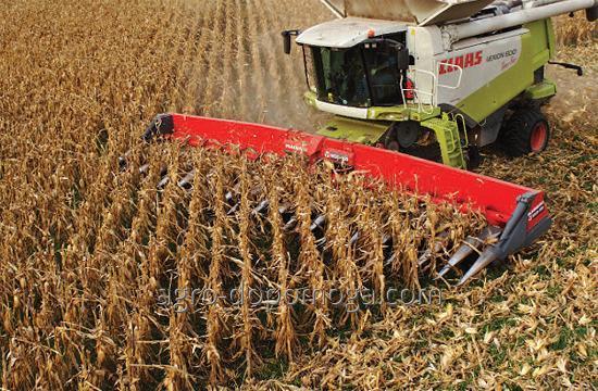 Заказать Уборка урожая кукурузы комбайном
