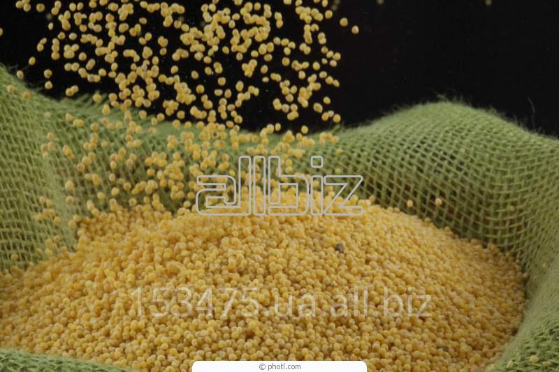 Заказать Спрей Мастер использует технологию хранения зерна в полиэтиленовых мешках