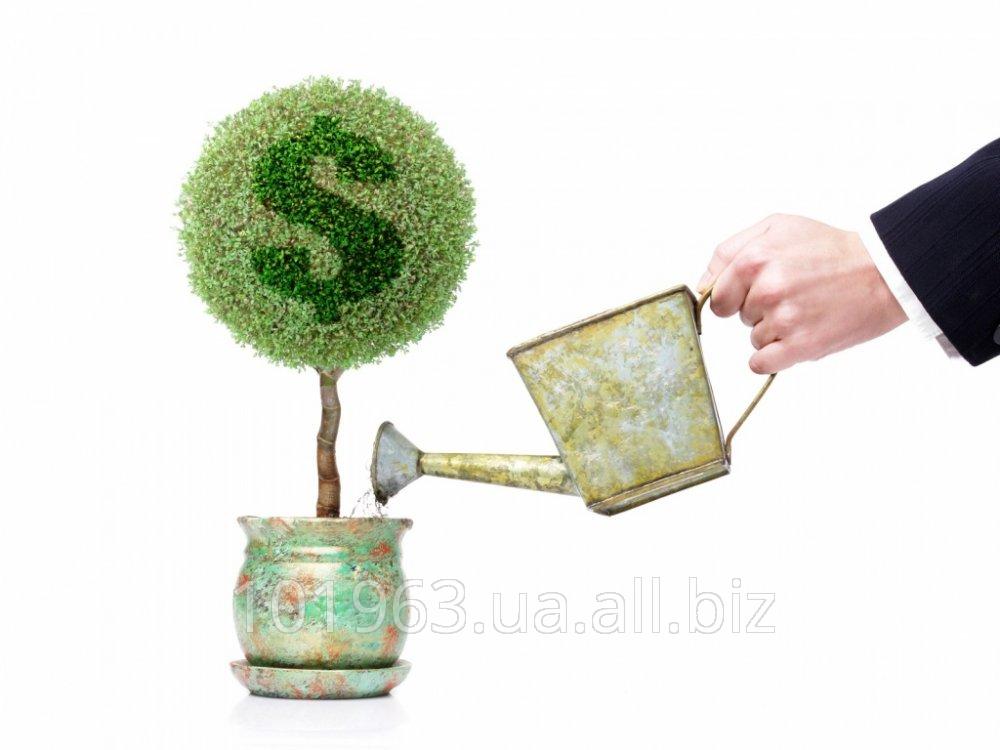 Заказать Финансирование инвестиционных проектов