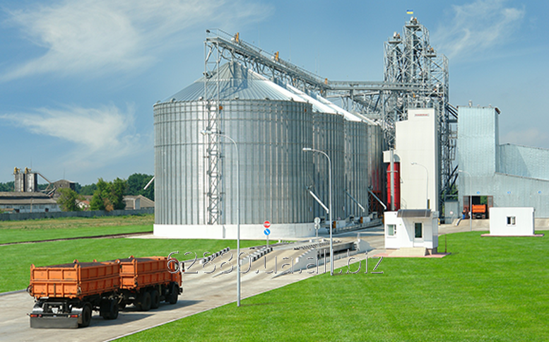 Order Export of grain and oil-bearing crops (trade activity)