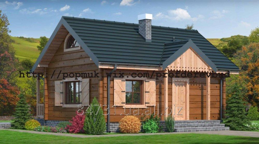 Заказать Професійне будівництво деревяних та каркасних будинків