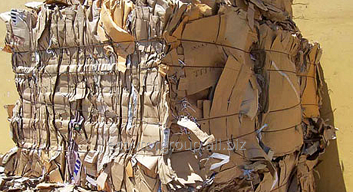Мешки макулатуры фото сбора макулатуры
