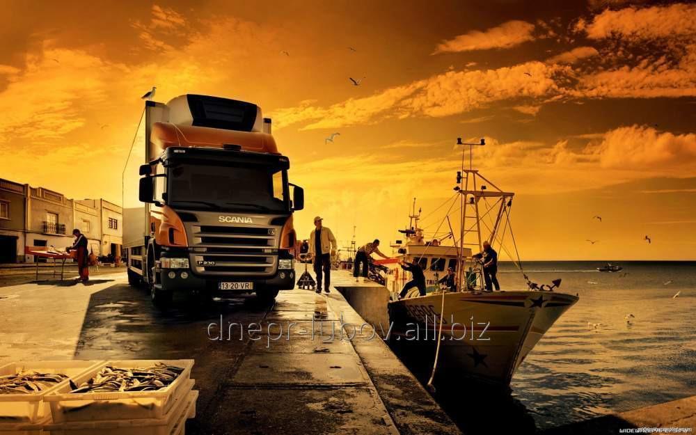 Перевозки грузов международные в Боснию Герцоговину