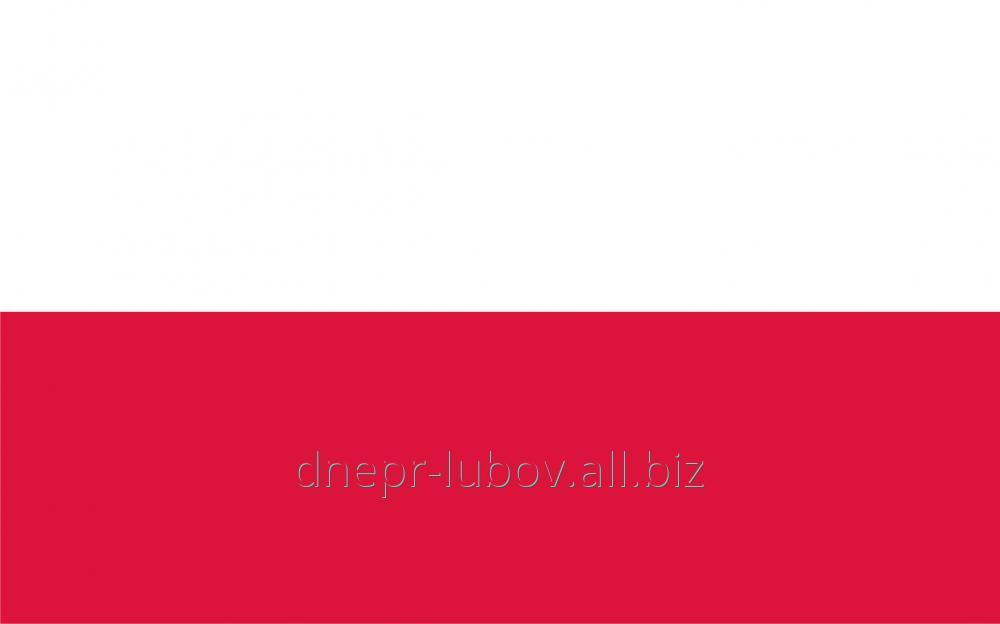 Автомобильные международные перевозки в Польшу