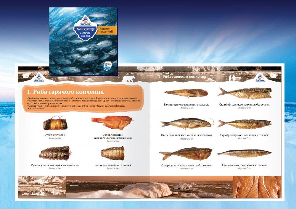 Заказать Дизайн презенторов, каталогов, маркетинг-кит