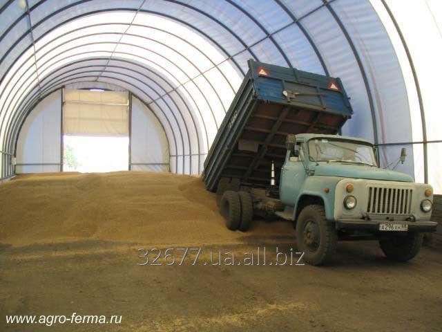 Заказать Строительство зернохранилищ