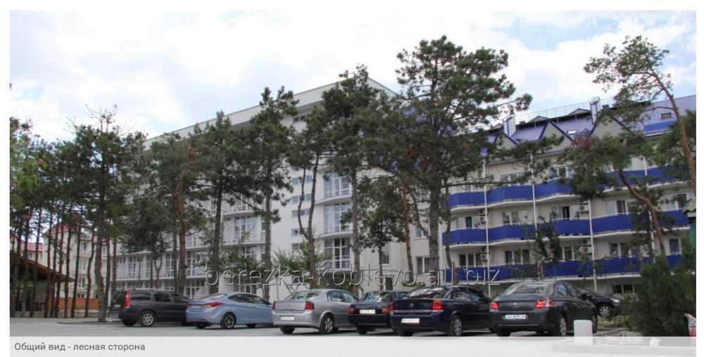 Заказать Отдых на море Коблево парк-отель Березка
