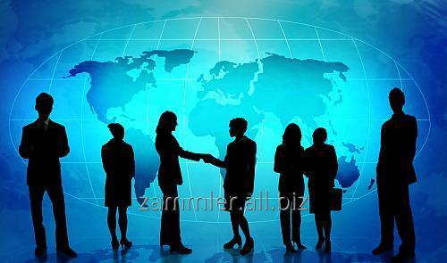 Организация бизнес-туров