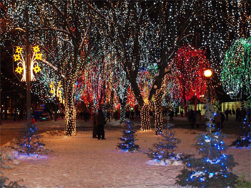 Заказать Новогоднее оформление светодиодными гирляндами деревьев, улиц, парков, территорий