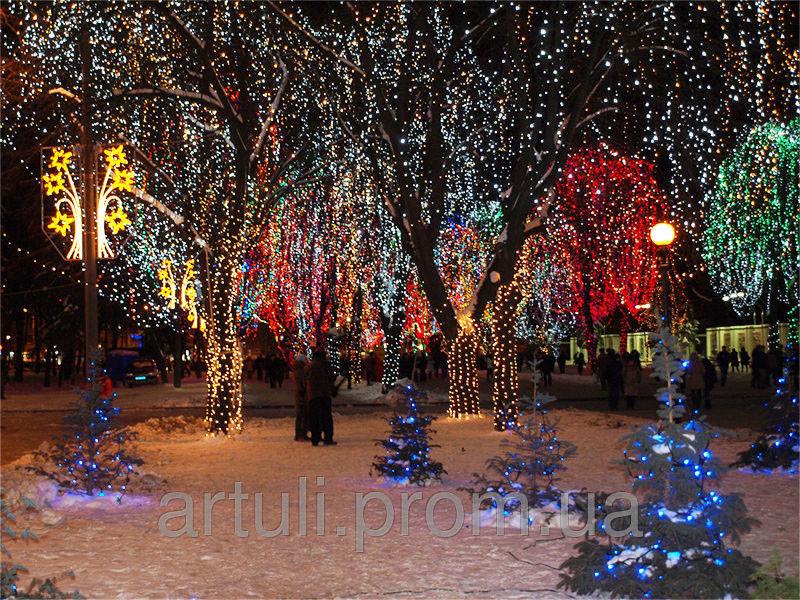Заказать Украшаем деревья, парки, бульвары, улицы светодиодными гирляндами