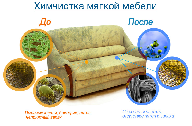 Заказать Химчистка ковров и мебели