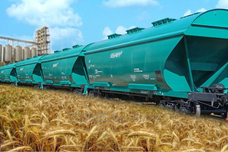 Заказать Ж/д перевозка зерновых и масличных культур вагонами-зерновозами
