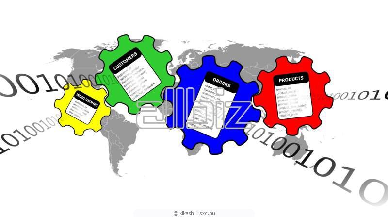 Услуги по маркетингу с использованием баз данных