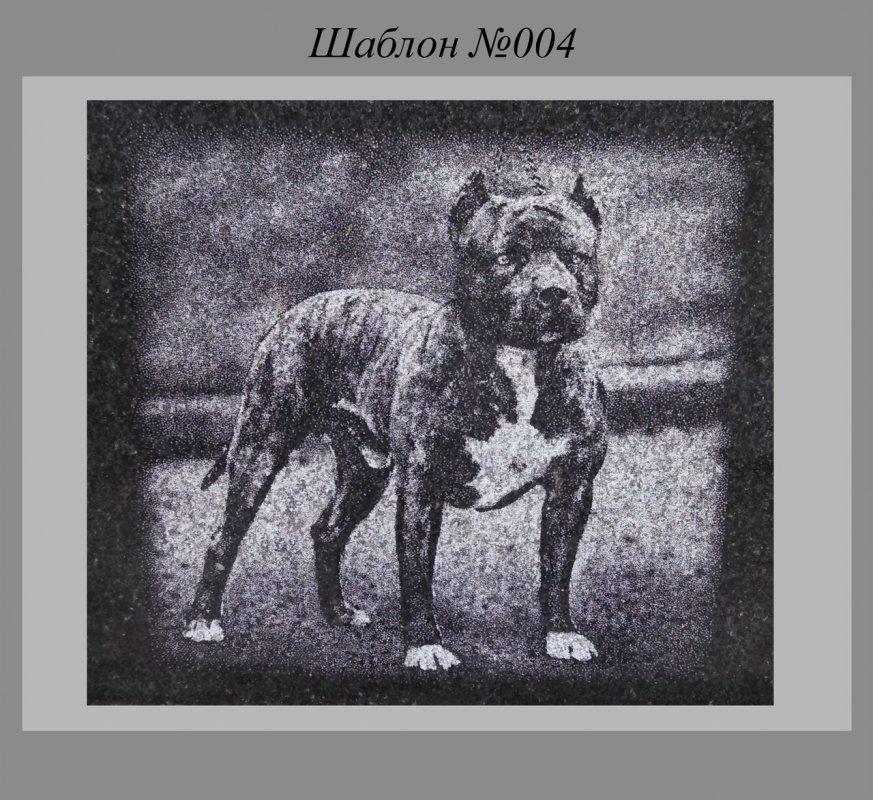 Заказать Художественное Оформление памятника Собака