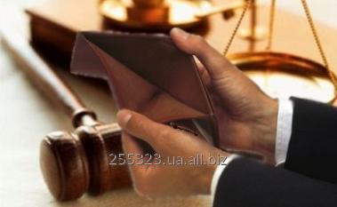 Заказать Ведення справ про банкрутство