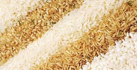 Заказать Закупка риса