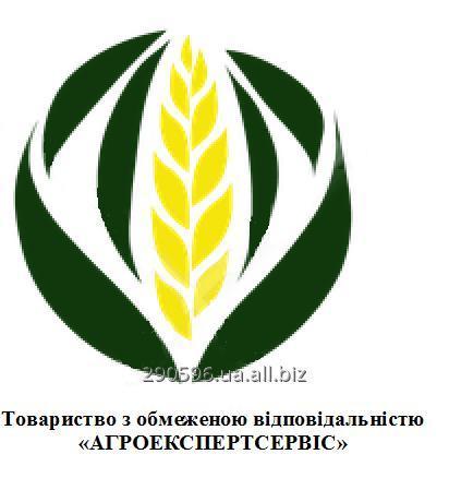 Заказать Лаборатория Агроекспертсервис предлагает сельхозпроизводителям комплексный анализ посевных качеств семян, анализ зерна и продуктов его переработки а также определение качественных показателей почвы