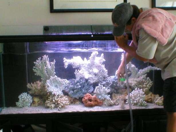 Заказать Обслуживание аквариумов
