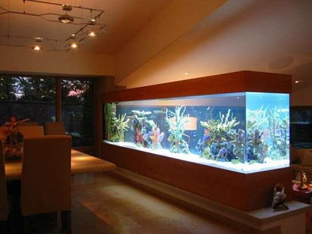 Заказать Оформление аквариума