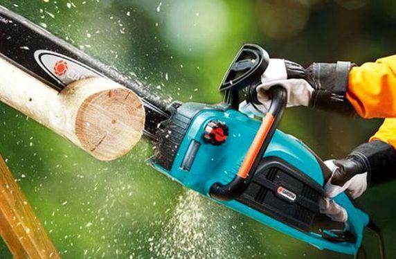 Заказать Валка, обрезка, спил, вырубка деревьев и веток эллектропилой или бензопилой в Запорожье