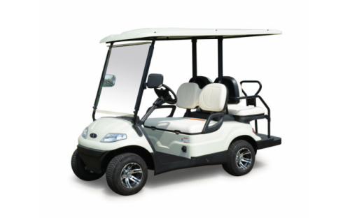 Order Lease of golf cars and electro golf of cows