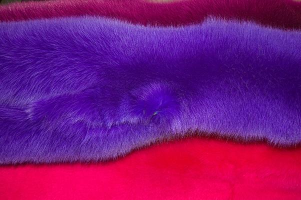 Заказать Мех Песец Shadow fox Електрик, Пурпур