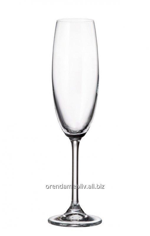 Заказать Аренда бокалов для шампанского во Львове