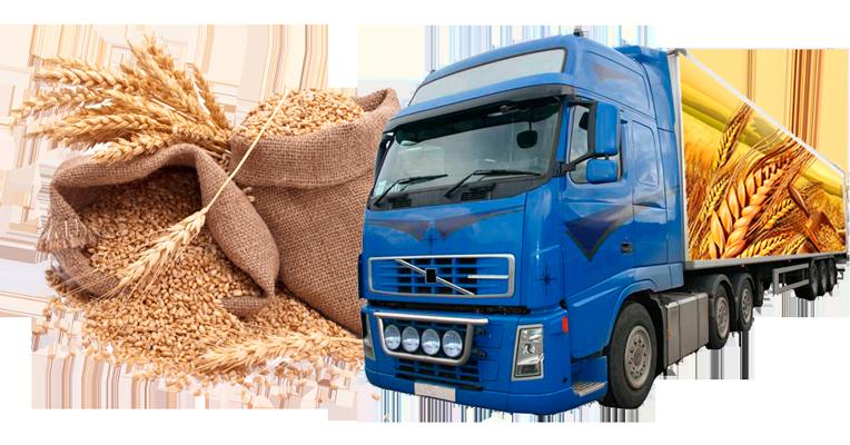 Заказать Услуги перевозки зерна