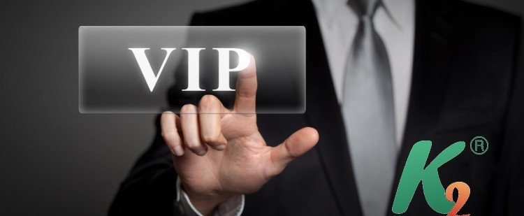 SEO-оптимизация сайта VIP