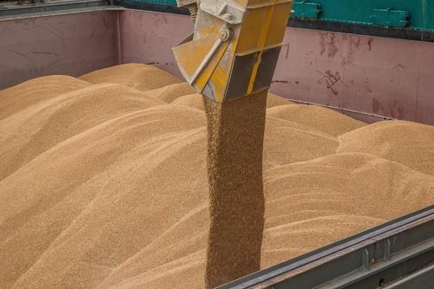 El transbordo del grano en los puertos