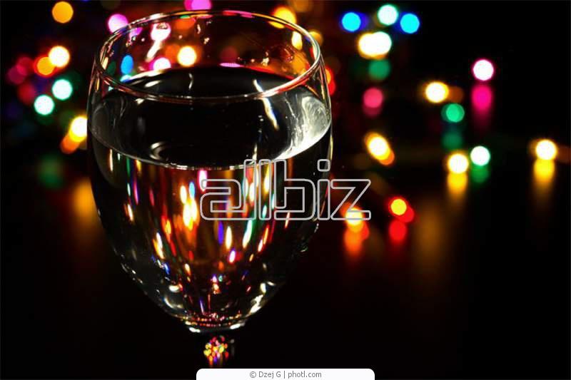 Заказать Диджей на Новый год .профессиональное озвучивание