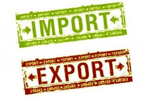 Услуги технического импортера