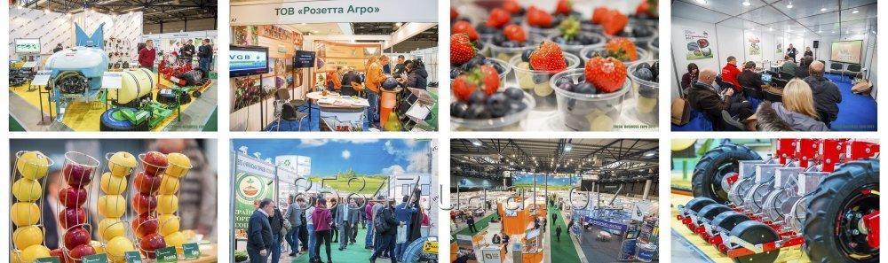 Заказать Fresh Business Expo 2018
