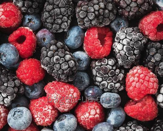 Order Blast Freezer foods vegetables, fruits, berries, meat, fish, poultry, convenience food dumplings, meatballs