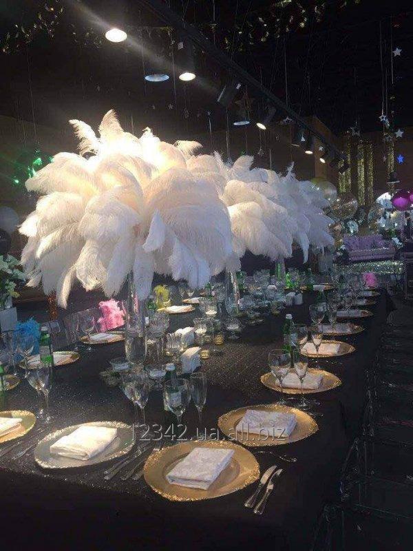 Заказать Оформление корпоративов и свадеб перьями страуса.
